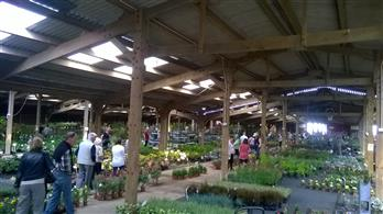 people looking round the giant plant sale