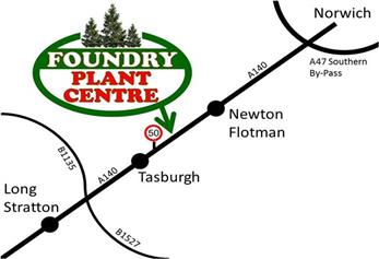 how to find foundry plant centre